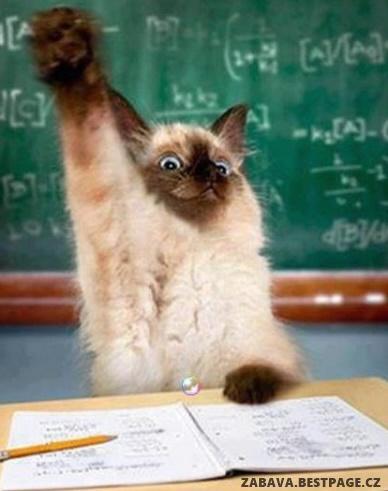 Já se hlásím, paní učitelko!